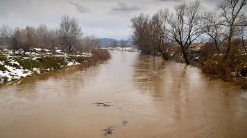 Оба Тимока изнад редовне линије одбране од поплава