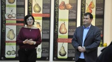 Изложба о старом и несталом воћу Србије