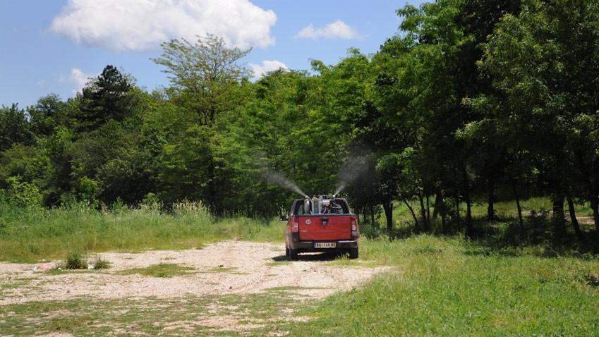 Зајечар: У четвртак третман сузбијања комараца